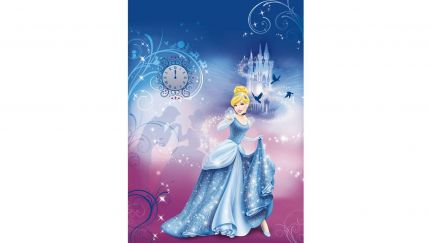 Poster Cinderella´s Night