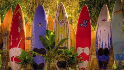 Poster Maui