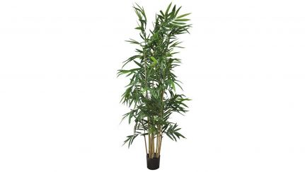Bamboo Cana Natural