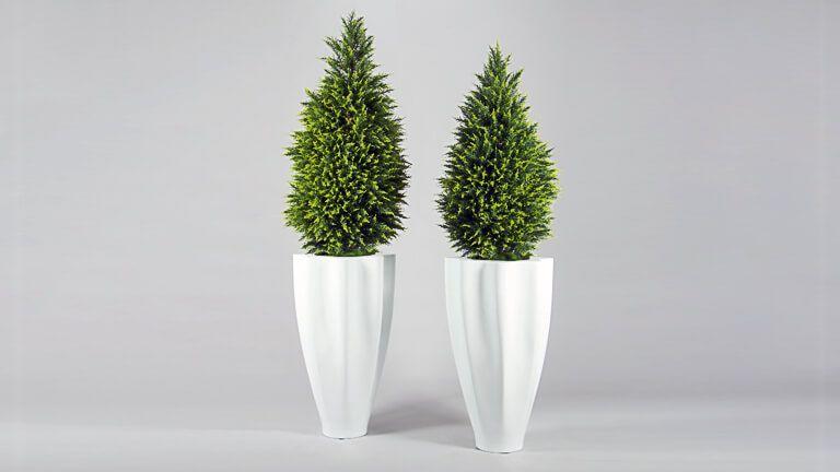Cupressus Tree, Vasos e Floreiras