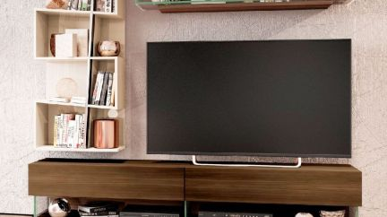 Composição TV Miss, modulo tv